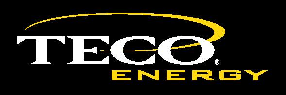 TECO-Energy_2C.JPG